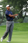 Tiger Woods, golf, golf betting